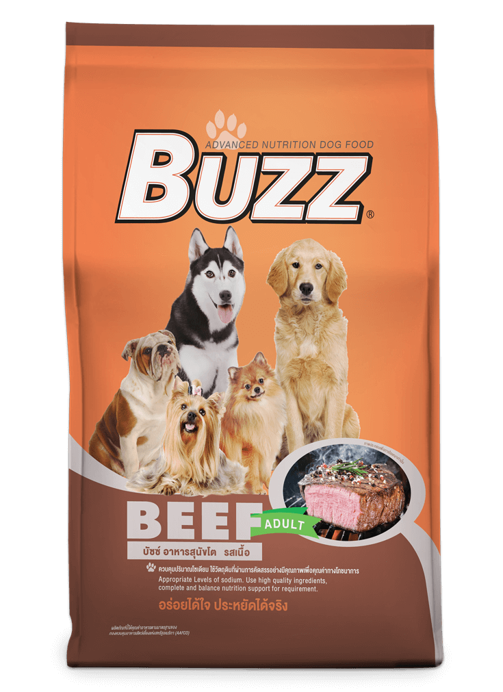 Buzz Balance Nutrition – Beef Flavour