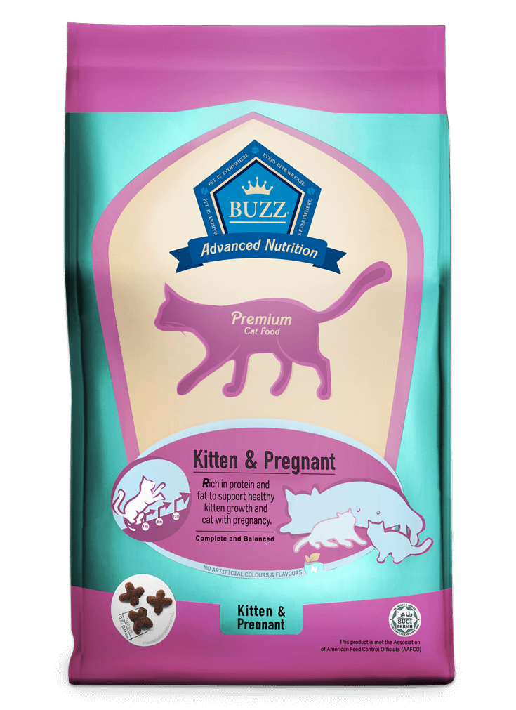 Buzz Advanced Nutrition – Kitten & Pregnant